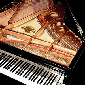 Compensati per strumenti musicali